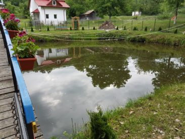 WhatsApp Image 2018 05 29 at 11.01.54 366x275 - Danicei Valcea - Poze si Filmari - Studioul Amintirilor Fotofraf Valcea Danicei
